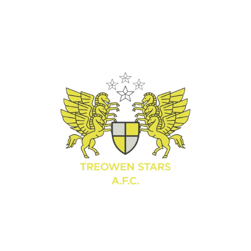 Treowen Stars Under 9's